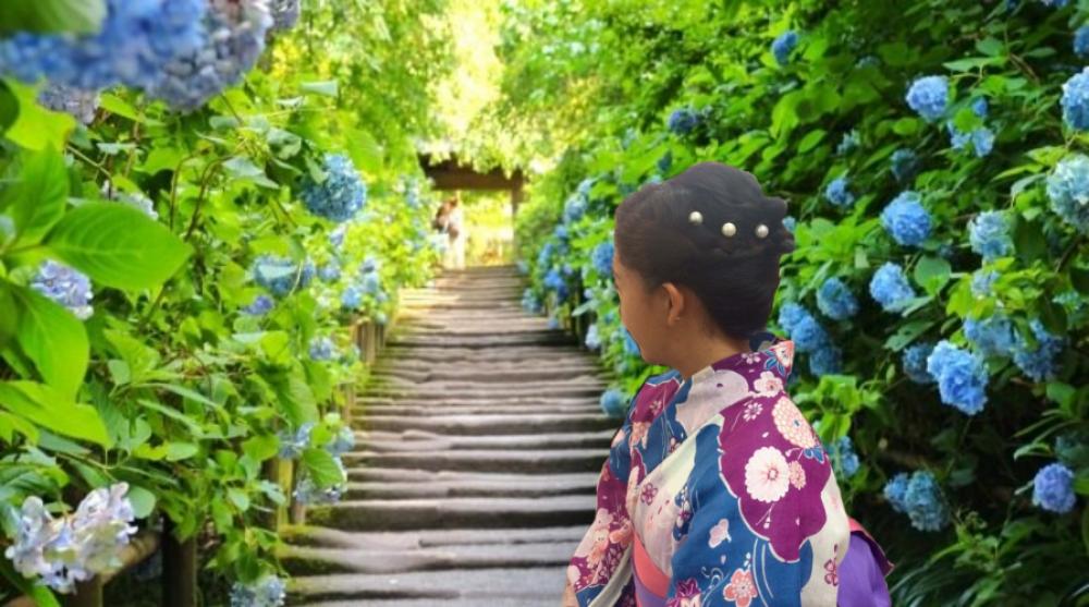 Kamakura Travel Guide : Explore Kamakura with Wearing Yukata